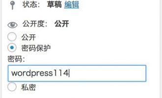 WordPress文章加密输入密码可见(密码保护)