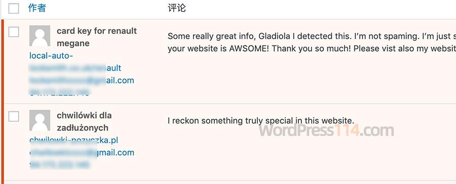WordPress全英文垃圾评论必须含中文评论
